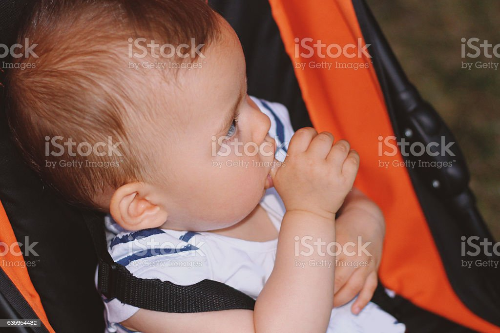 Baby (6 months old) Portrait With Finger In Mouth stock photo