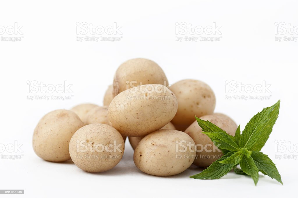 Baby potatoes with a mint leaf royalty-free stock photo