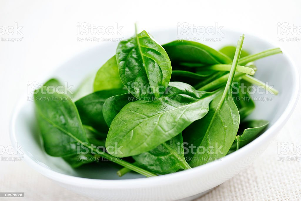 Baby spinach in a white bowl on a white background royalty-free stock photo