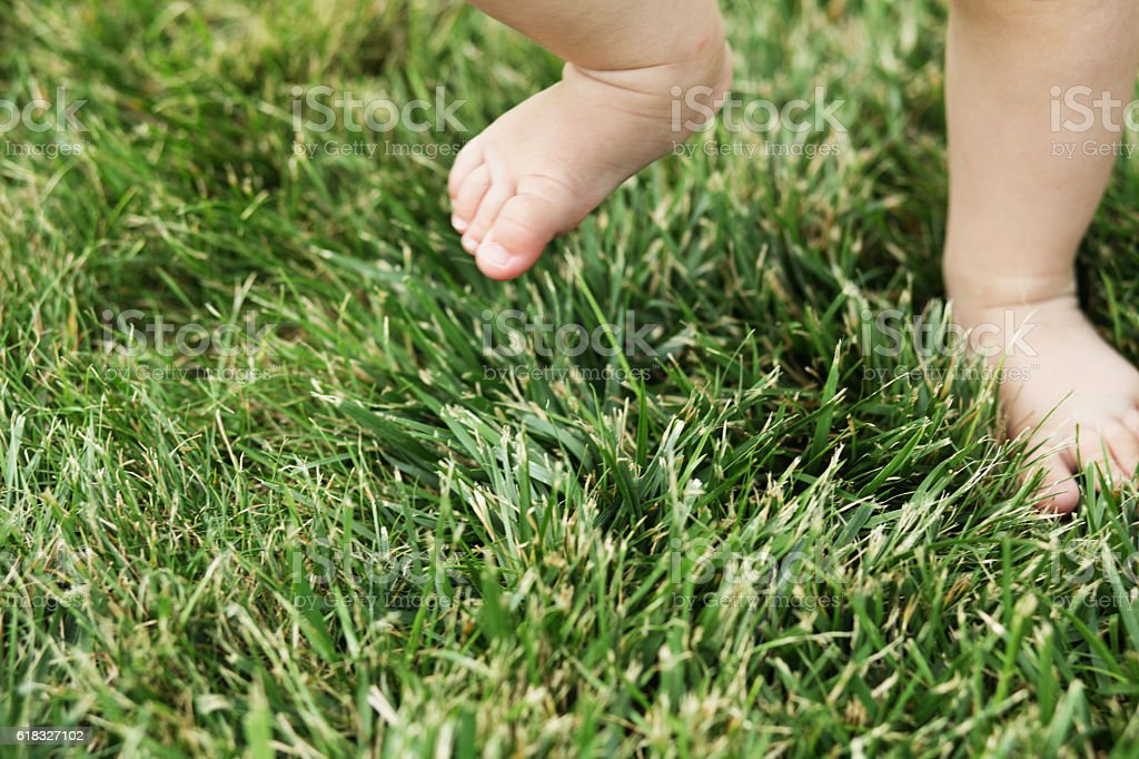 Baby standing barefoot on the grass stock photo