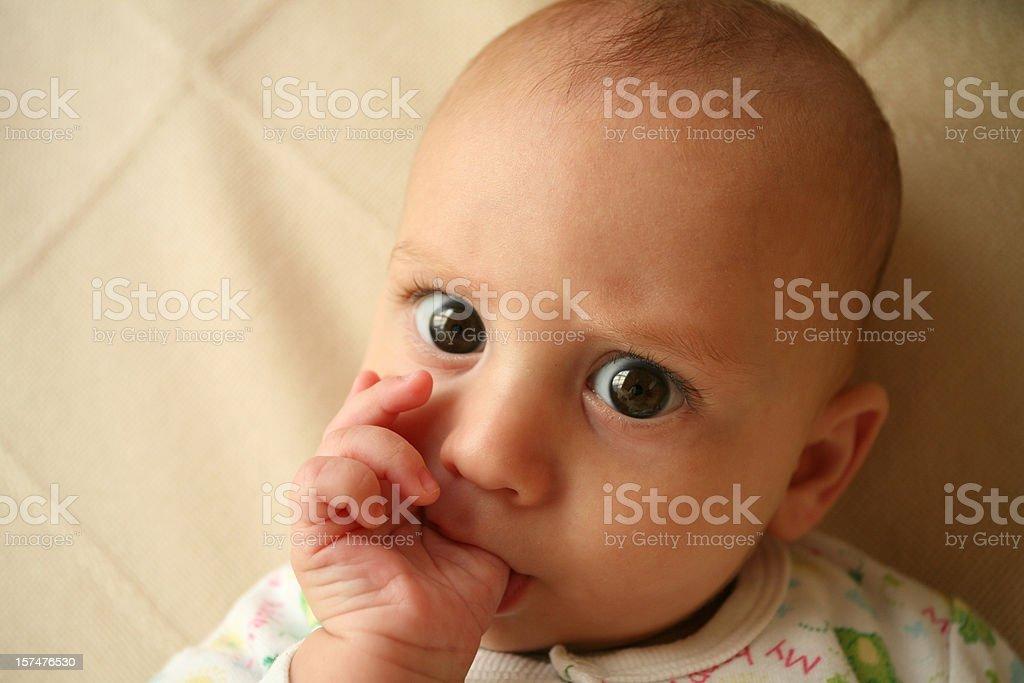 Baby thumb sucking royalty-free stock photo