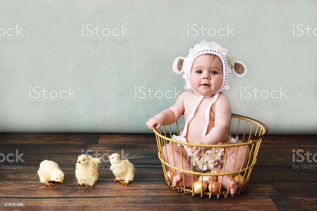 Baby Wearing Lamb Bonnet Sitting in Antique Egg Basket stock photo