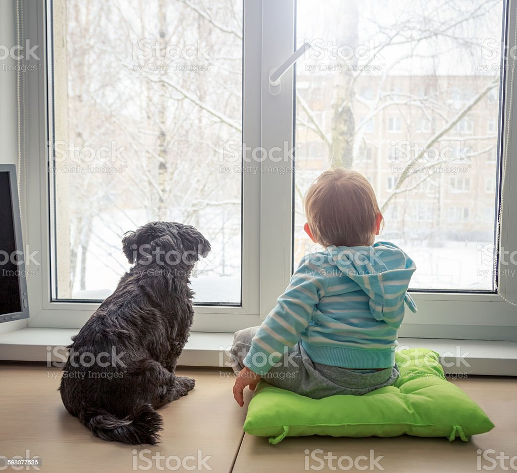 Baby with Dog Looking through a Window in Winter stock photo