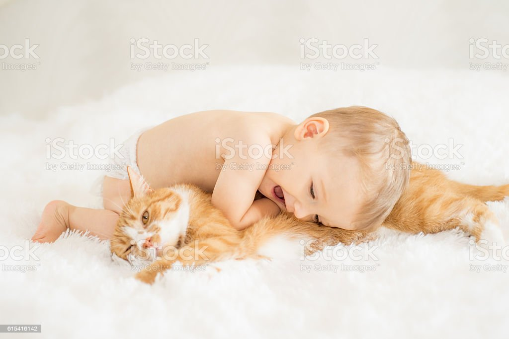 Baby with his cat stock photo