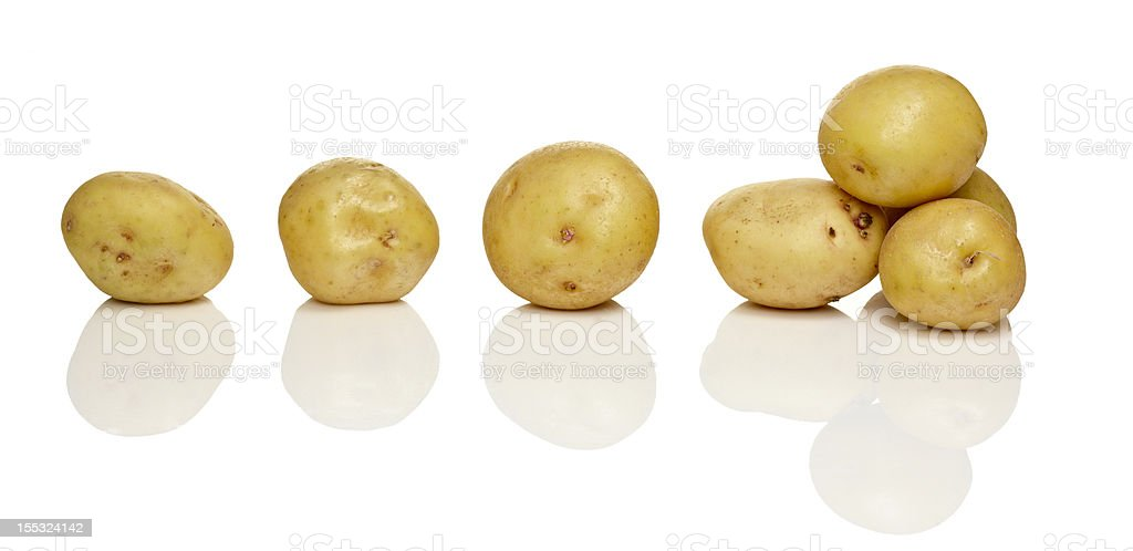 Baby yukon gold potatoes stock photo