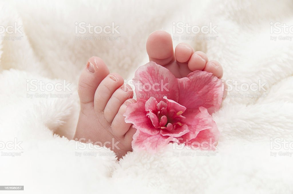 Babyfeet with pink flower royalty-free stock photo