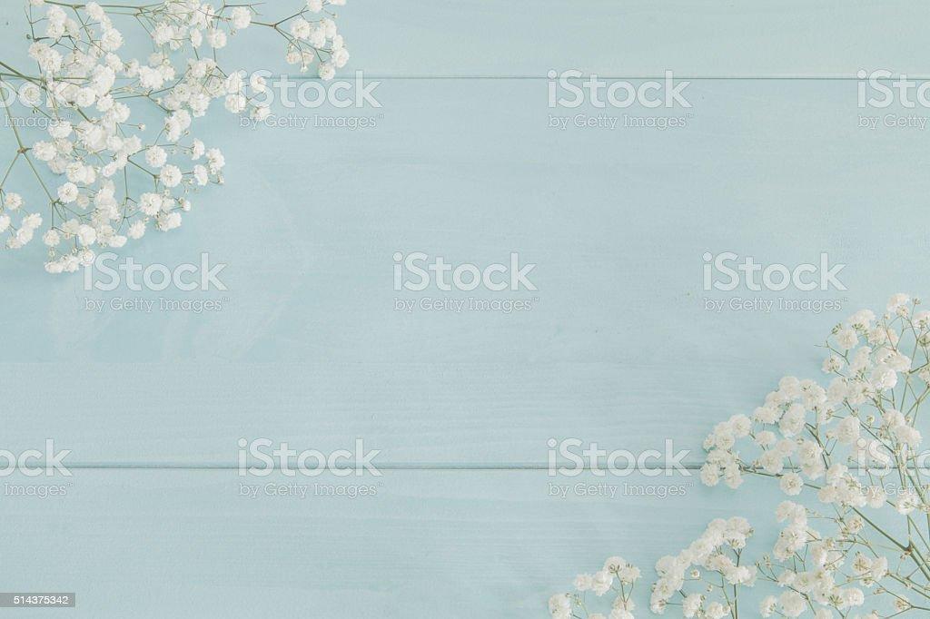 Baby's breath background stock photo