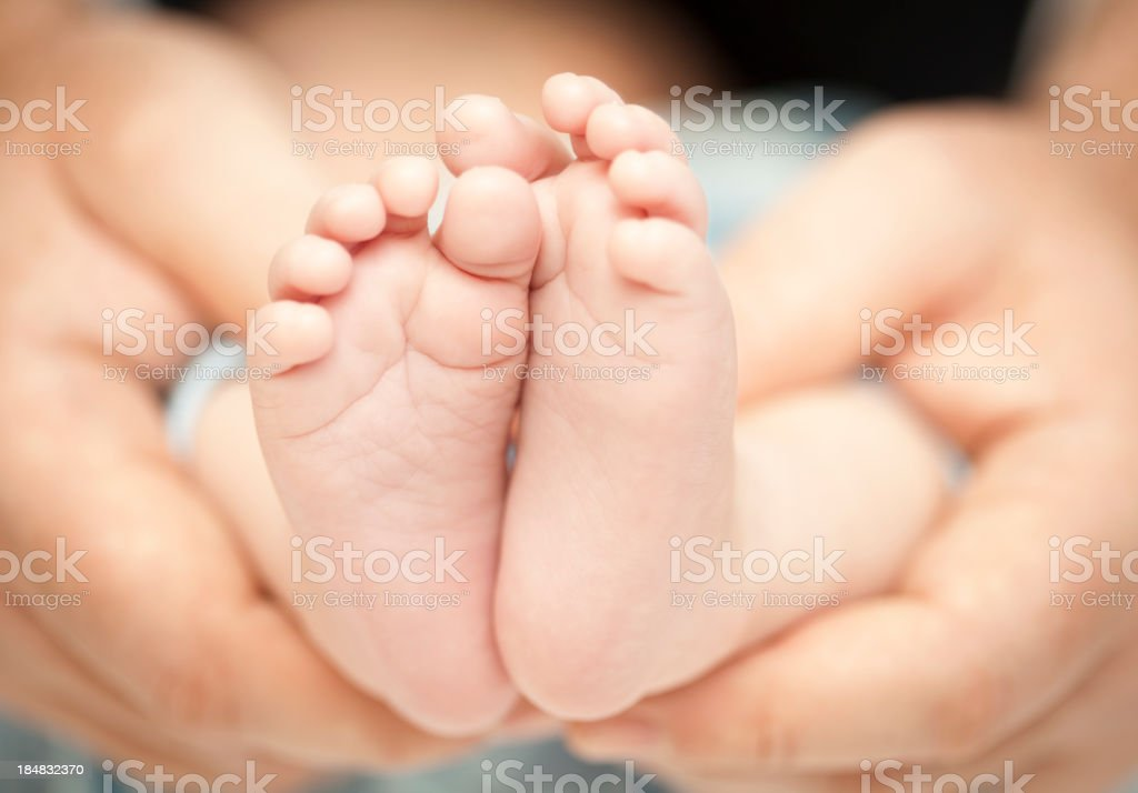 A baby's feet held in the hands of a parent royalty-free stock photo