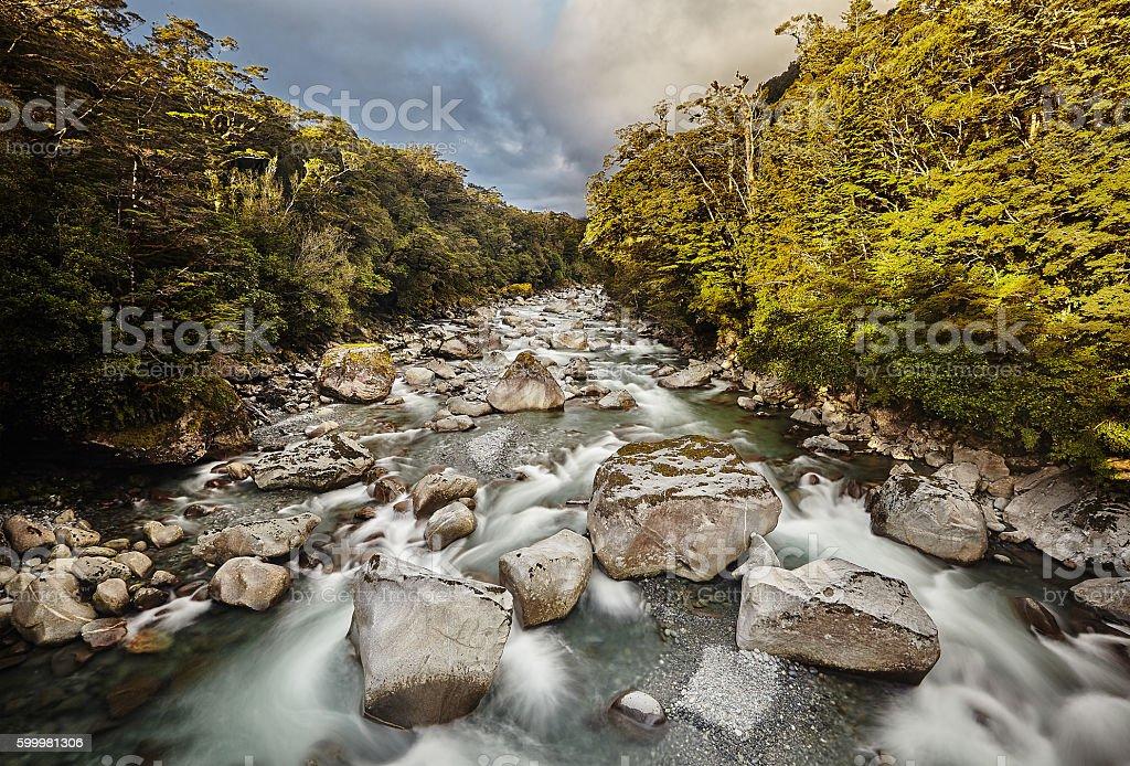 Bachlauf, Milford Sound stock photo