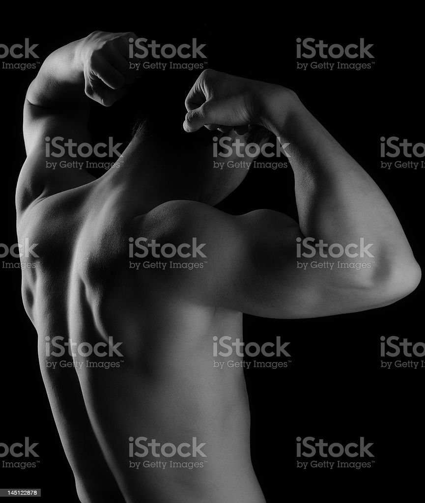 Back and Biceps 2 stock photo