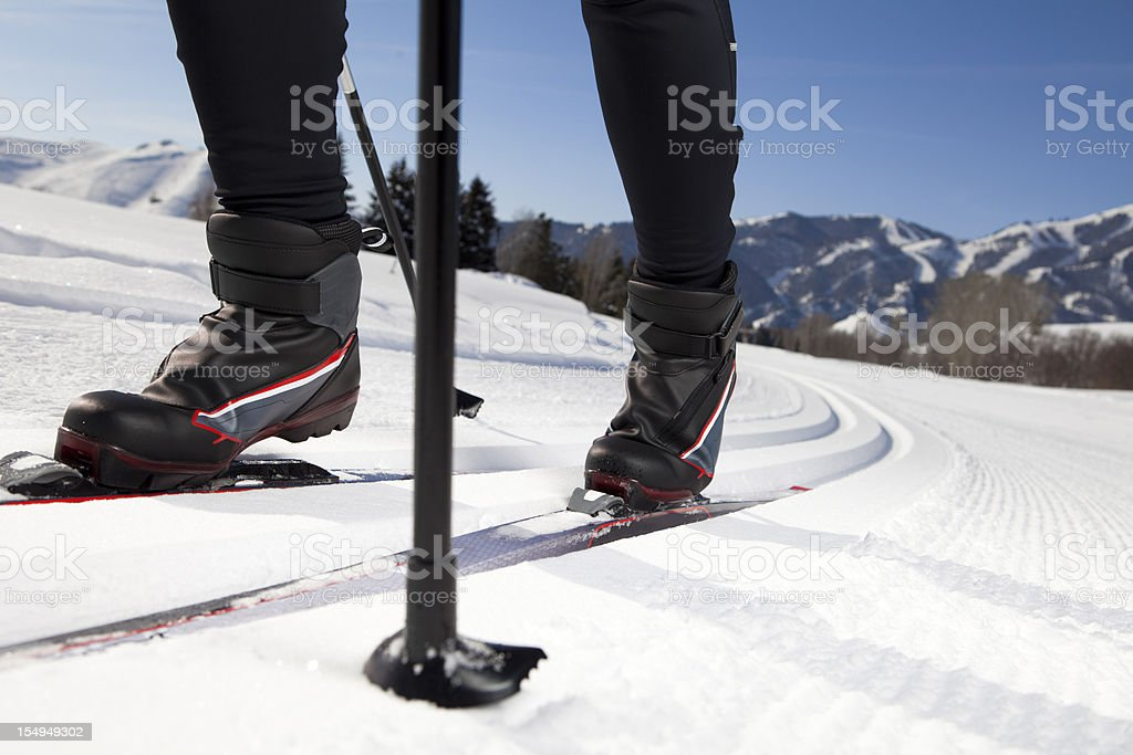 Back Country Nordic Skiing royalty-free stock photo