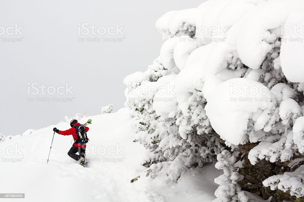 Back country skier walking in deep powder snow stock photo