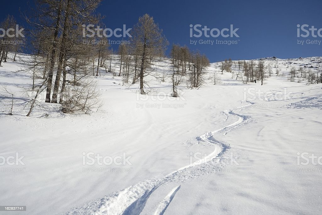 Back country skiing royalty-free stock photo