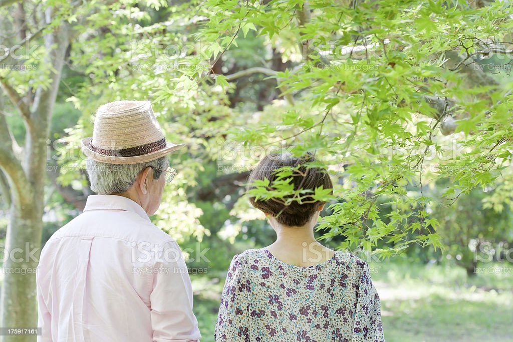 Back figure of the old couple royalty-free stock photo
