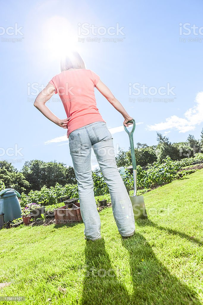 Back lit woman in garden with spade stock photo