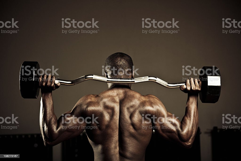 back muscles royalty-free stock photo