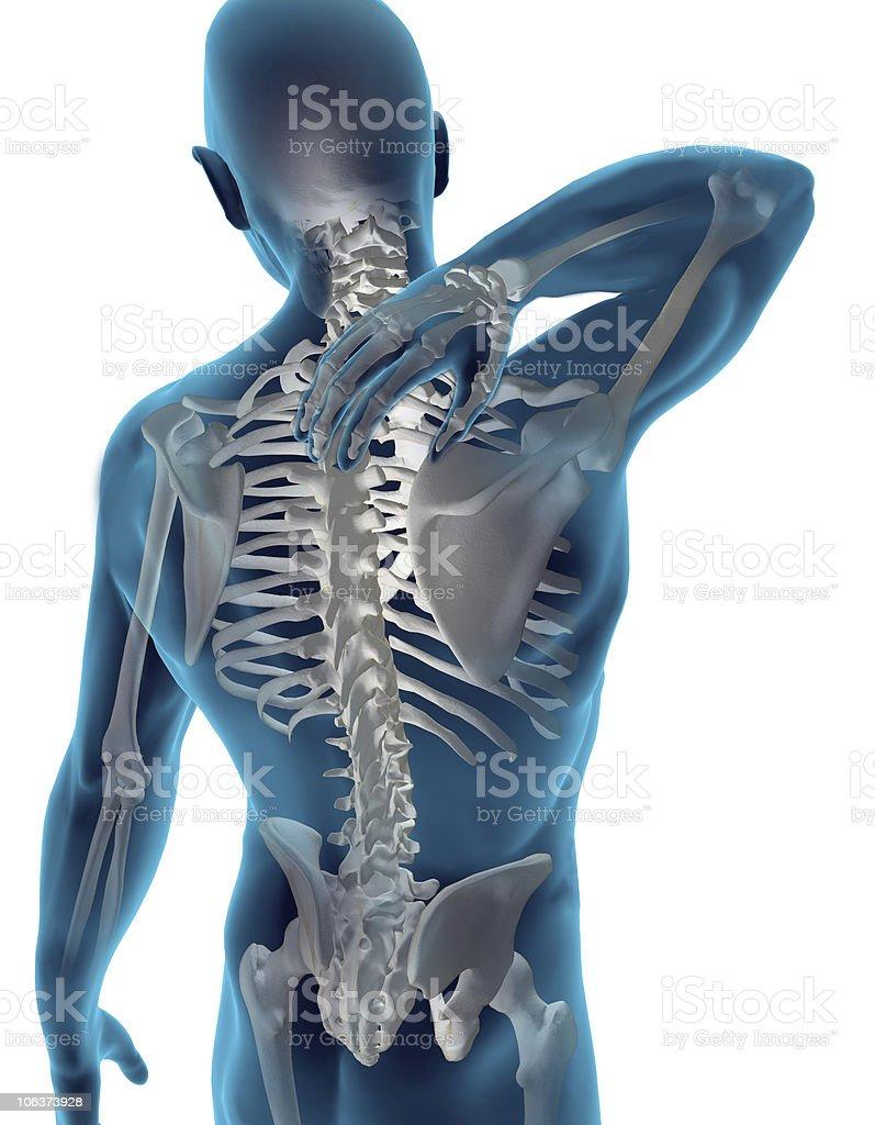 Back & Neck Pain stock photo
