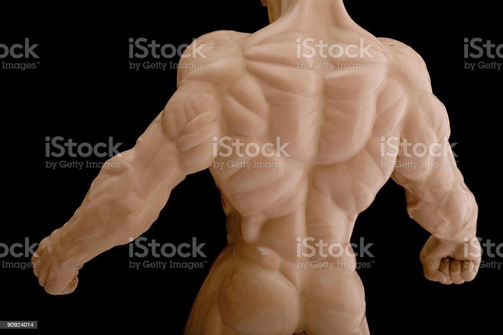Back of bodybuilder royalty-free stock photo