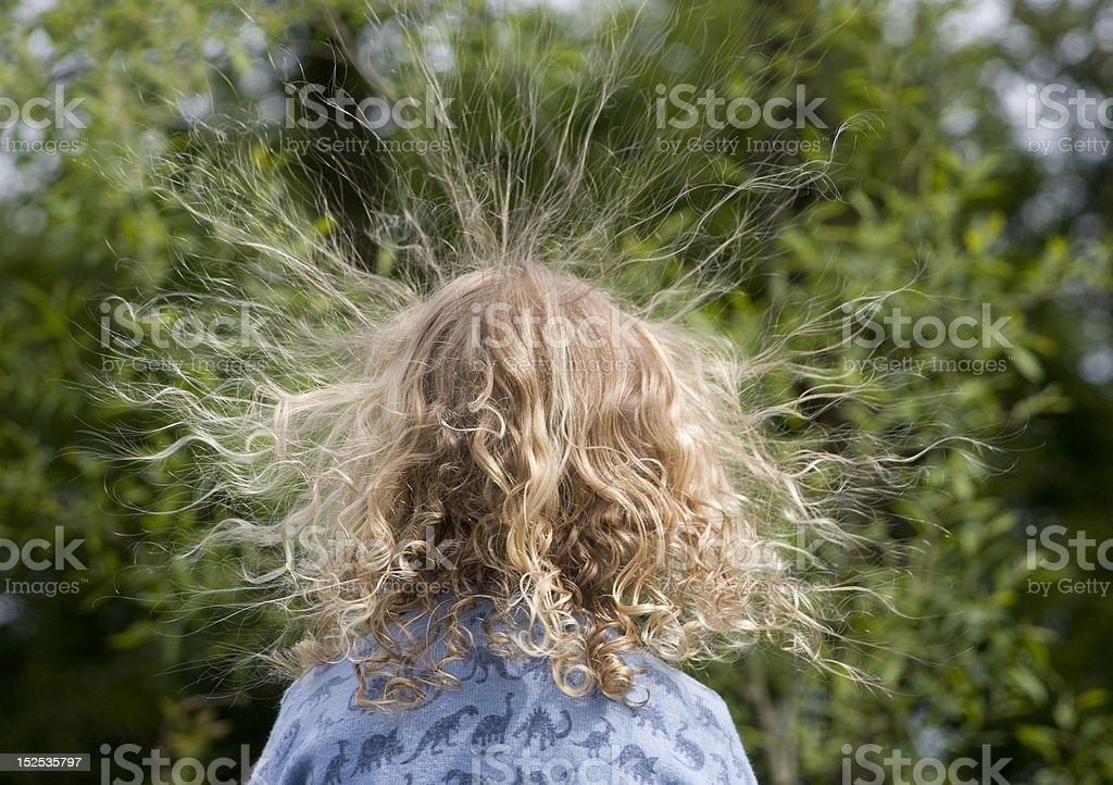 Back of Head - Static Hair stock photo