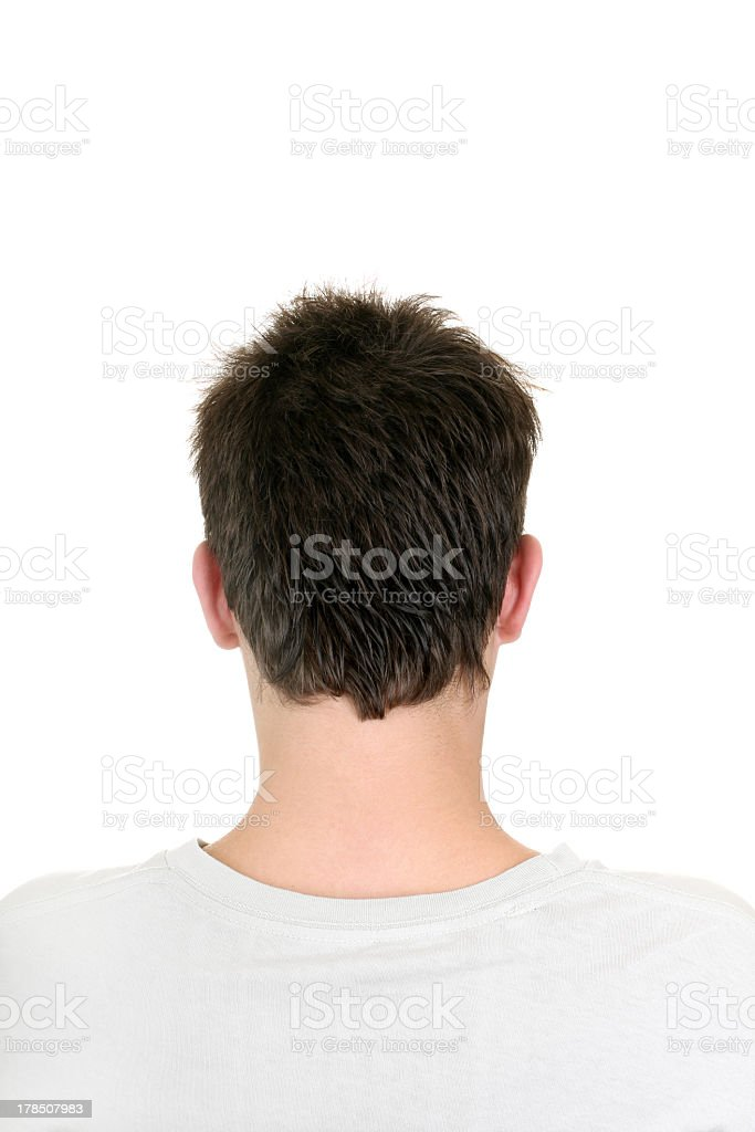Back of man's head on a white background stock photo