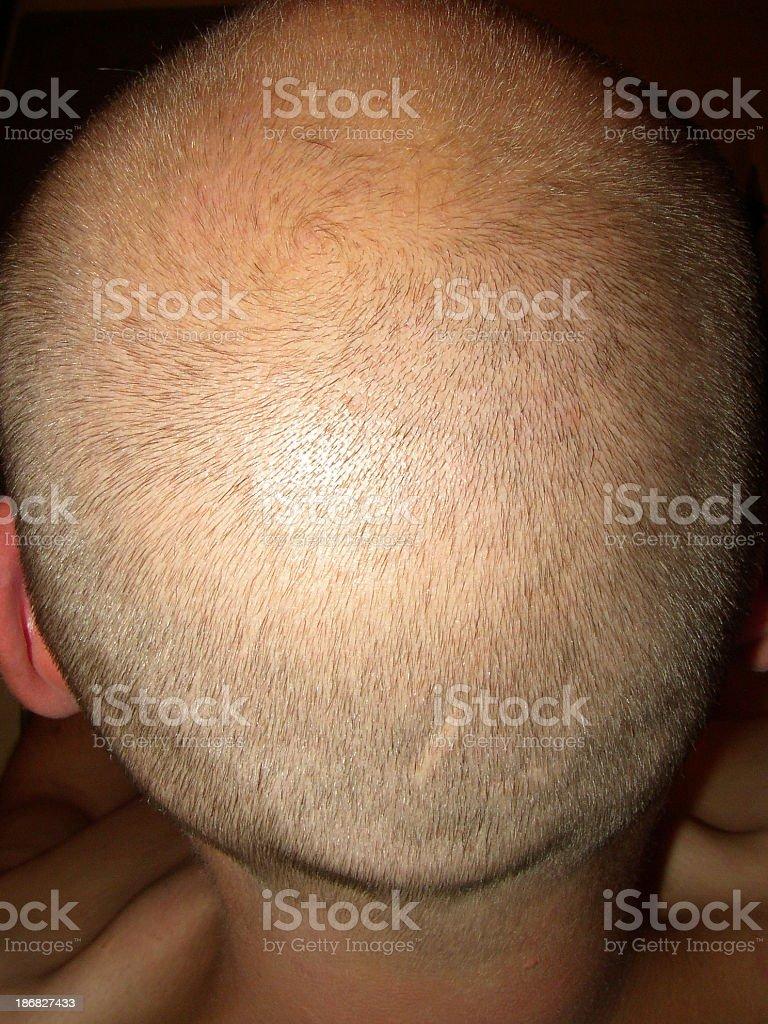 back of my head royalty-free stock photo