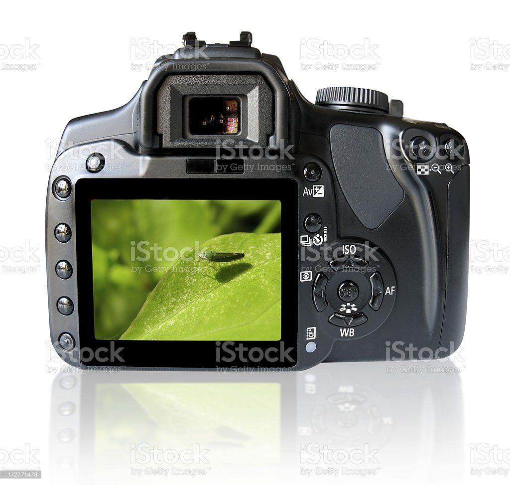 Back of SLR camera with clipping path royalty-free stock photo