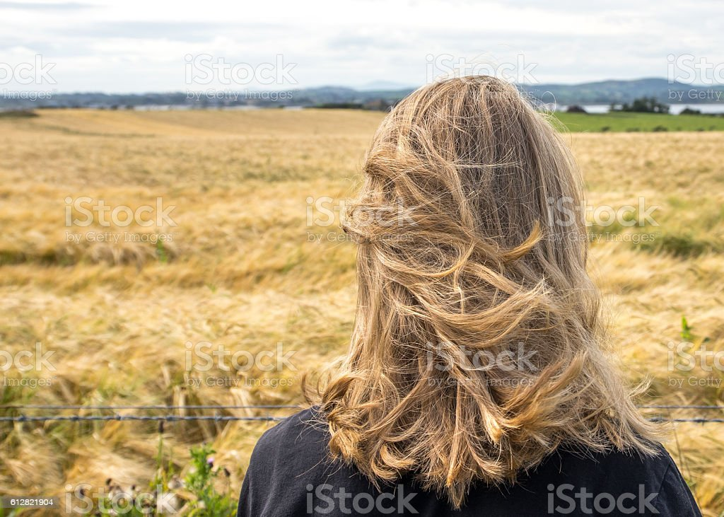 Back of teenager's head, looking over straw-colored field stock photo