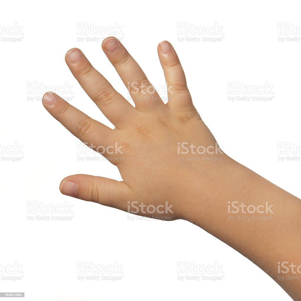 Back open right hand of a child on white background royalty-free stock photo