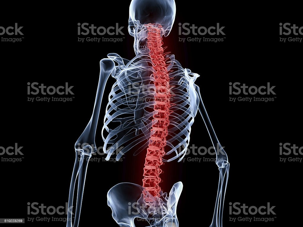 Back Pain, Spine stock photo