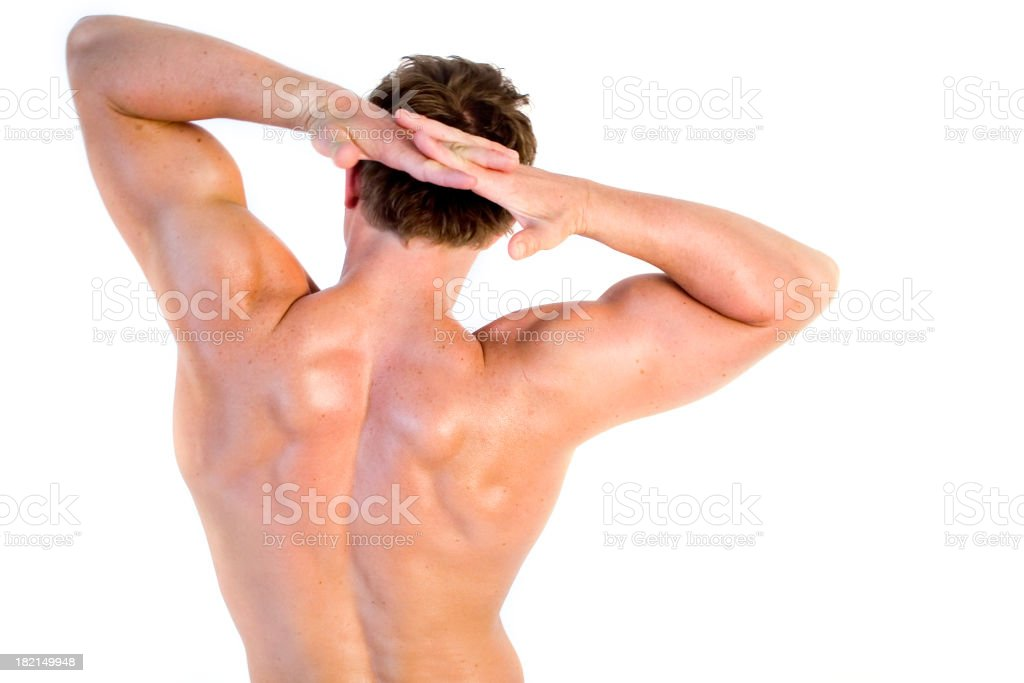Back royalty-free stock photo