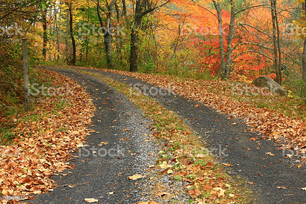 Back Road royalty-free stock photo