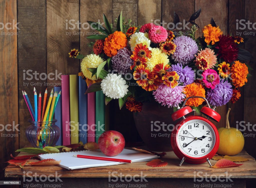 Back to school. Alarm clock, bouquet, apples, and books on the table. stock photo