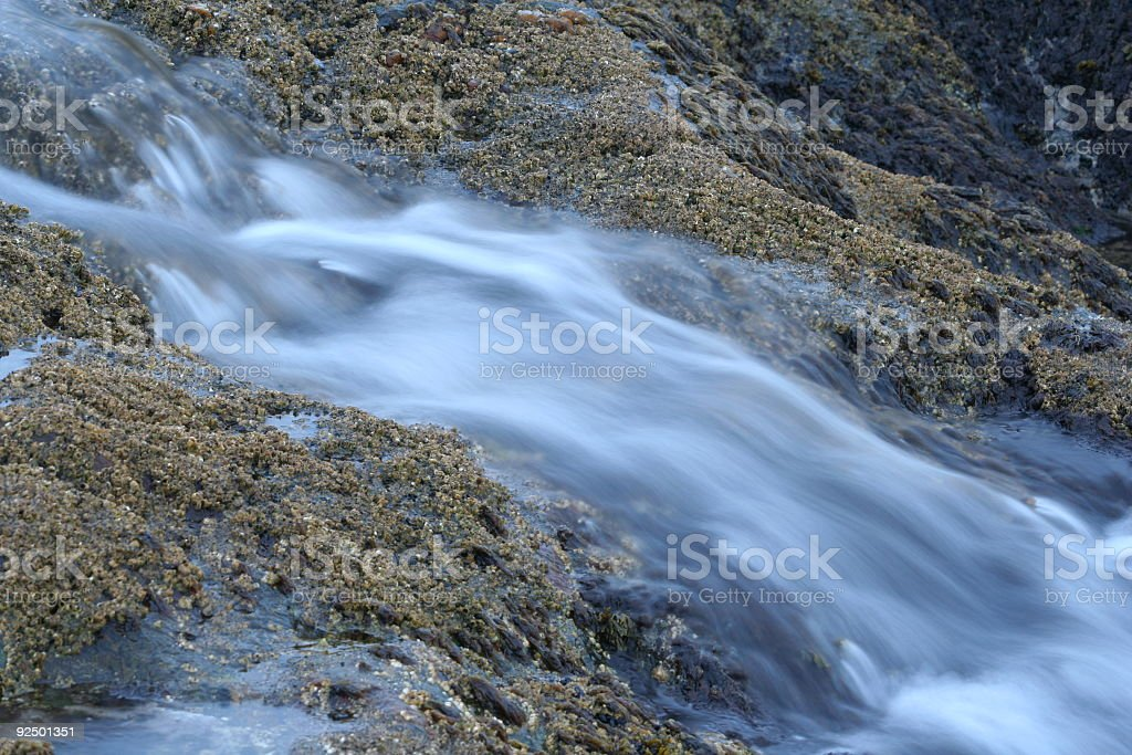 Back to the ocean royalty-free stock photo