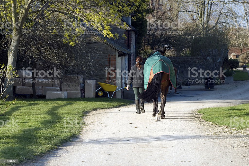 Back to the stables royalty-free stock photo