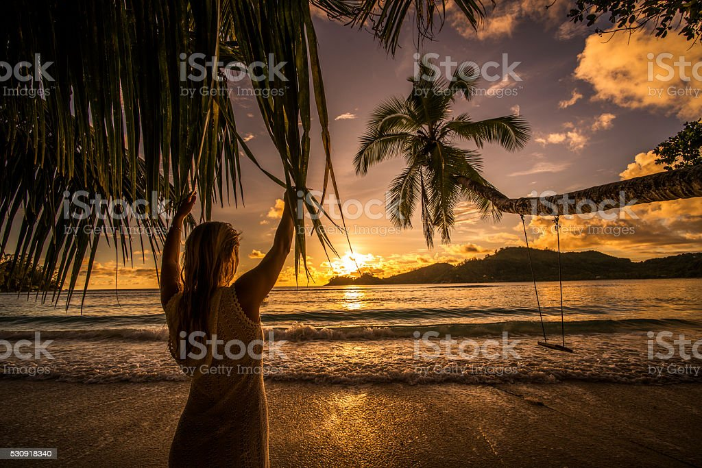 Back view of a woman looking at breathtaking sunset. stock photo