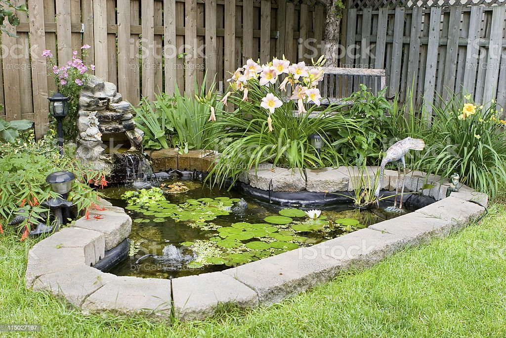 Back Yard Fish Pond stock photo
