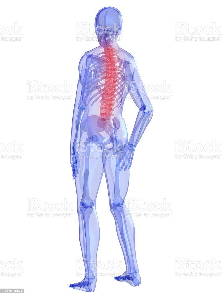 backache illustration royalty-free stock photo