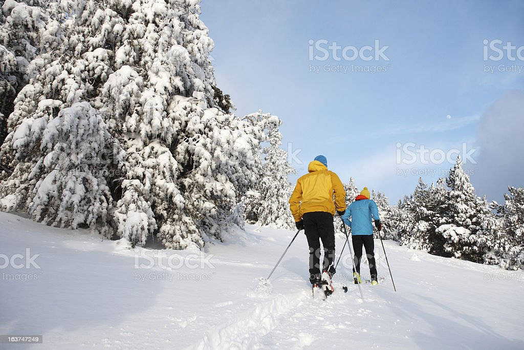 Backcountry ski stock photo