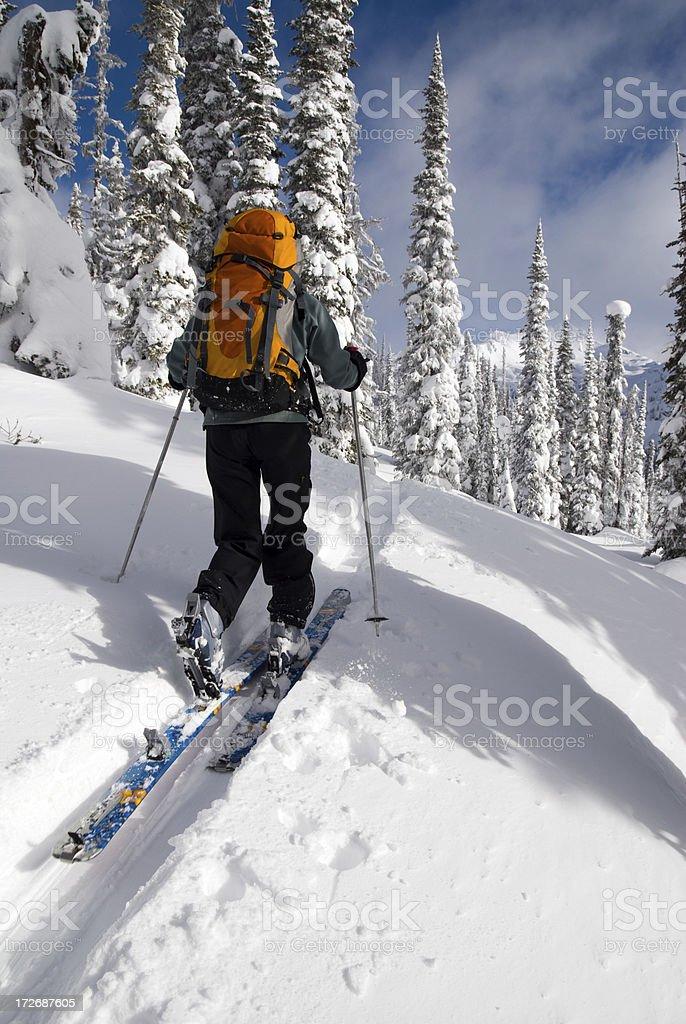 Backcountry Skiing Uptrack stock photo