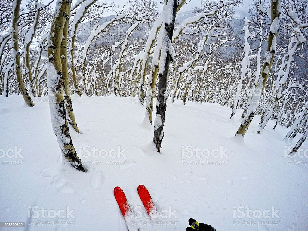 Backcountry Skiing with Fresh Snow stock photo