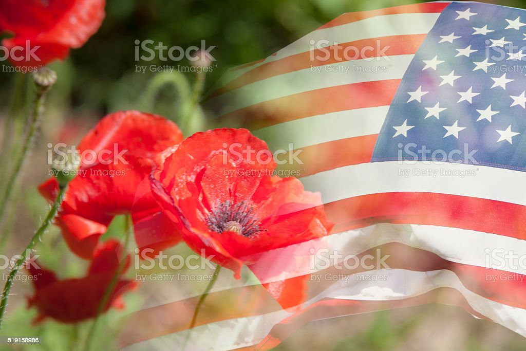 Background:  American flag with poppy flower background. USA. Patriotism. stock photo