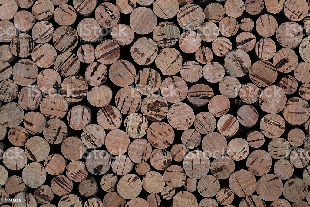 background and the texture of the cork tree stock photo