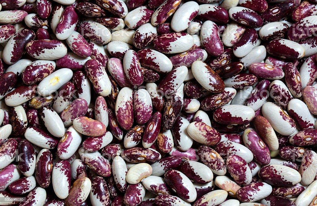 background bean seeds stock photo