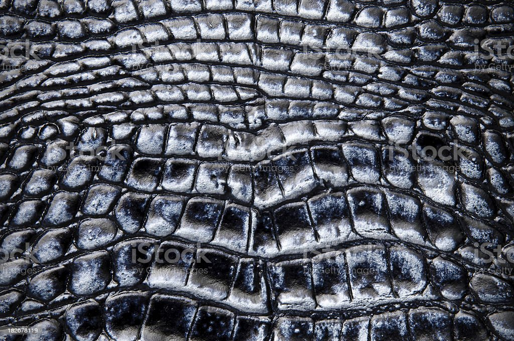 Background Black And Silver Python Leather royalty-free stock photo
