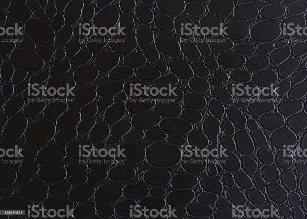 Background Black Snake Leather royalty-free stock photo