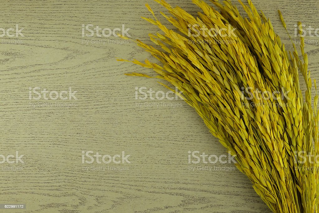 background crops stock photo