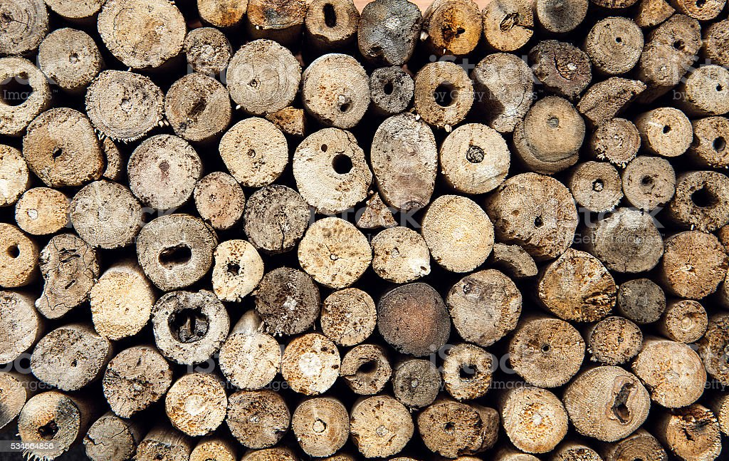 Background dry teak logs stacked up on top of each stock photo