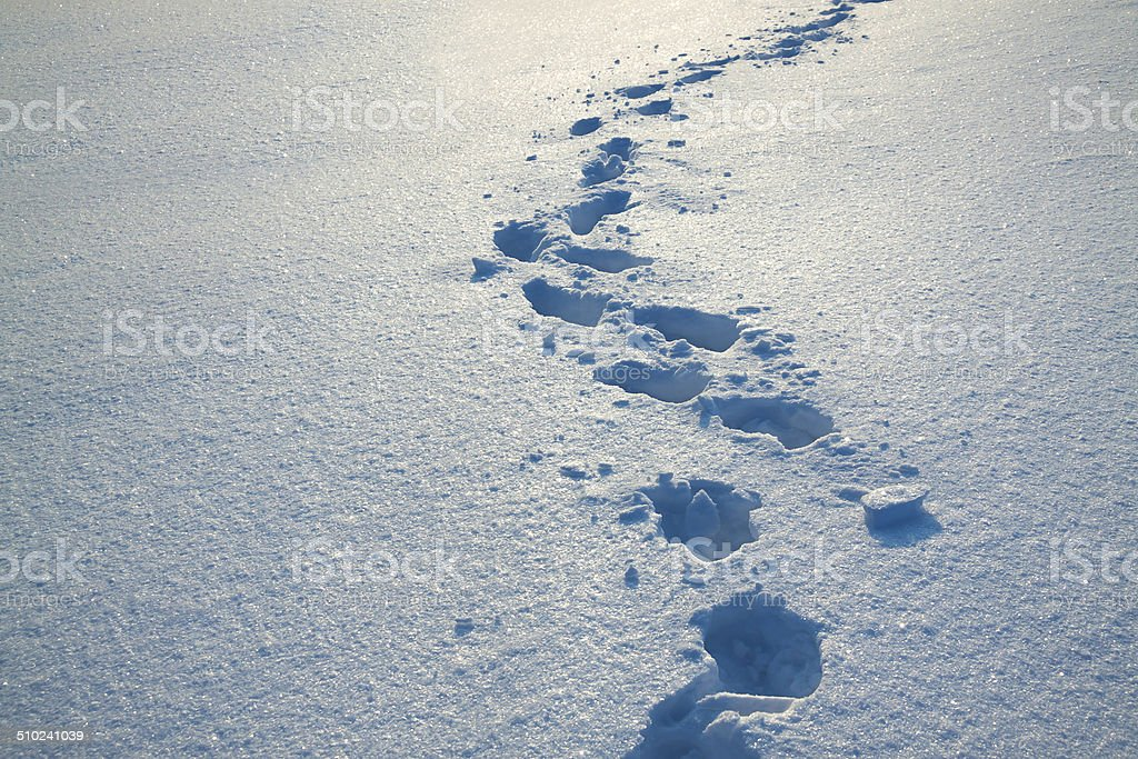 background from snow and traces on it stock photo
