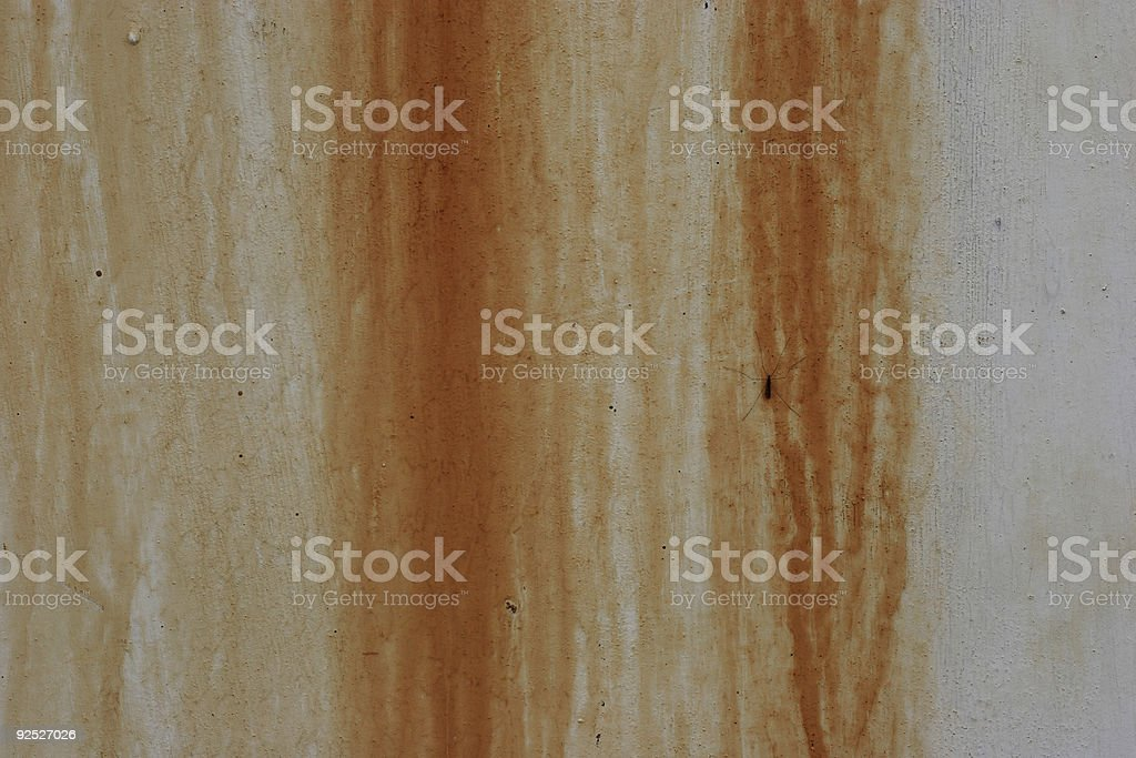 Background grunge texture: rust streaks with insect stock photo