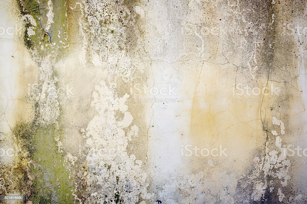 Background: grungy, stained, pitted, concrete wall with lichen stock photo